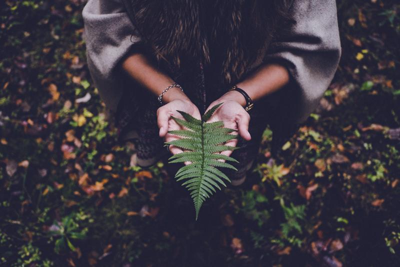 Doula work - Private coaching/mentorship - Rituals for the Autumn Equinox